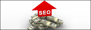 Increase SEO Budget 2014